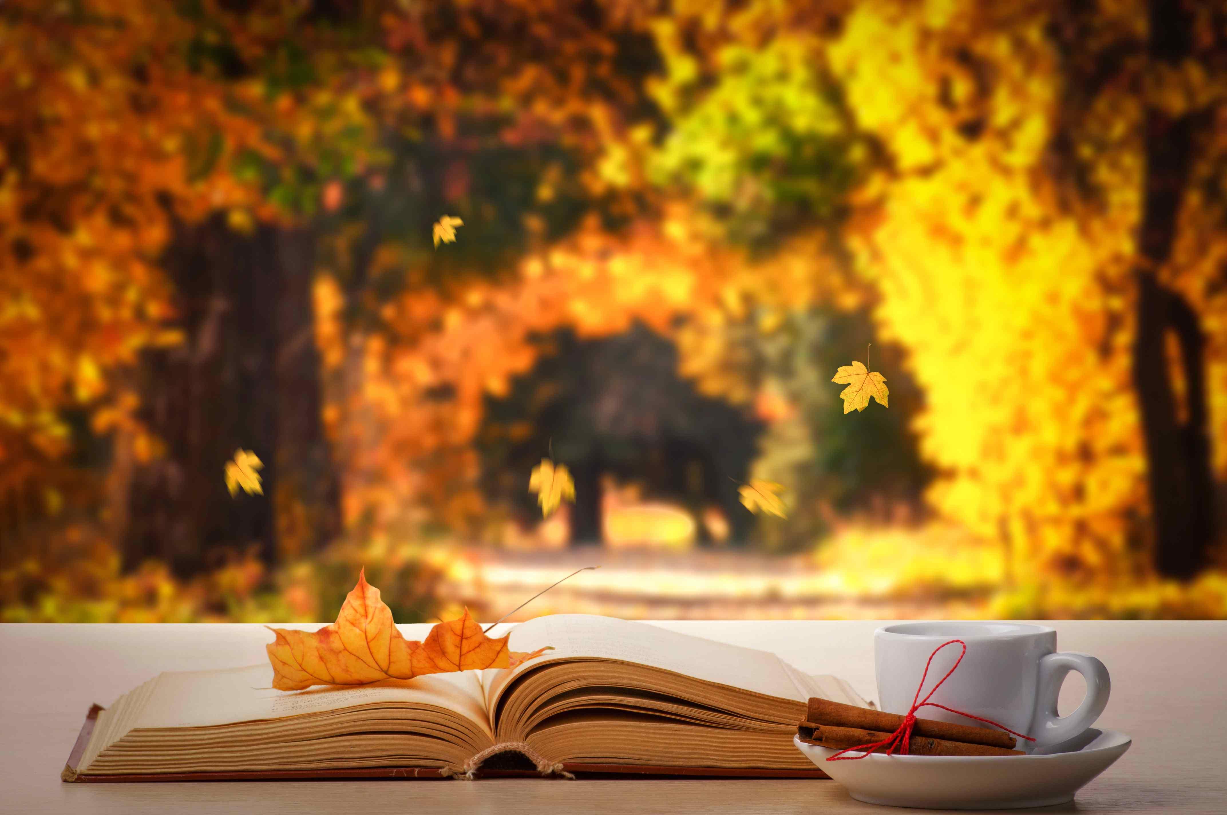 通勤の合間に読書の秋