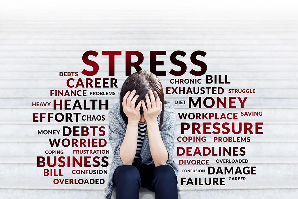 तनाव/ストレス