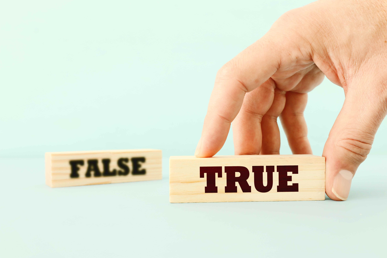 မှန်ကန်သောသတင်းကိုသာယုံကြည်ပါ။/正しいニュースを信じる