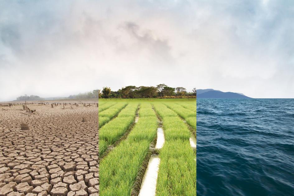 環境の変化